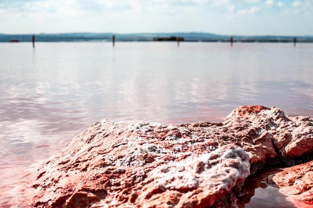 Torrevieja pink lake in alicante, spanje