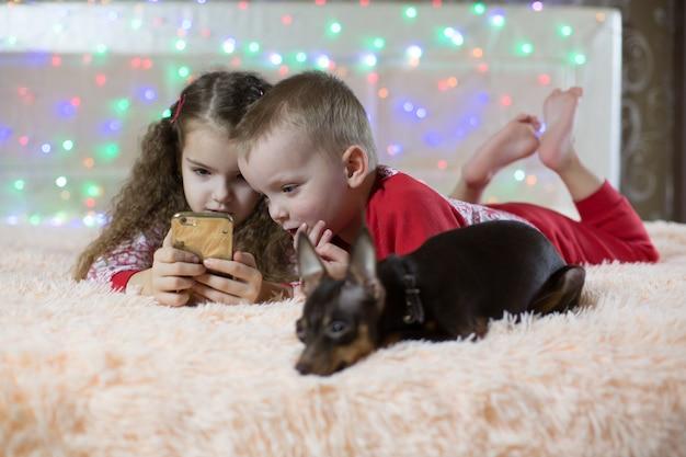 Toy dog terrier verveelt zich, kinderen spelen de telefoon in het nieuwe jaar