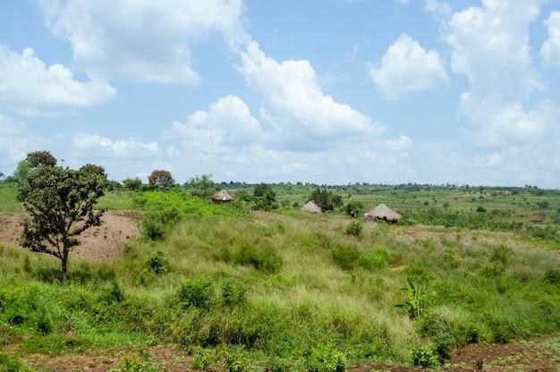 Traditioneel dorpshuis in oeganda afrika oeganda