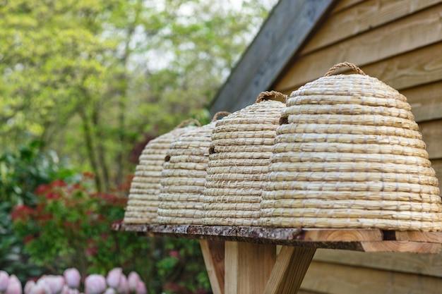 Traditionele bijenkorven in een tuin