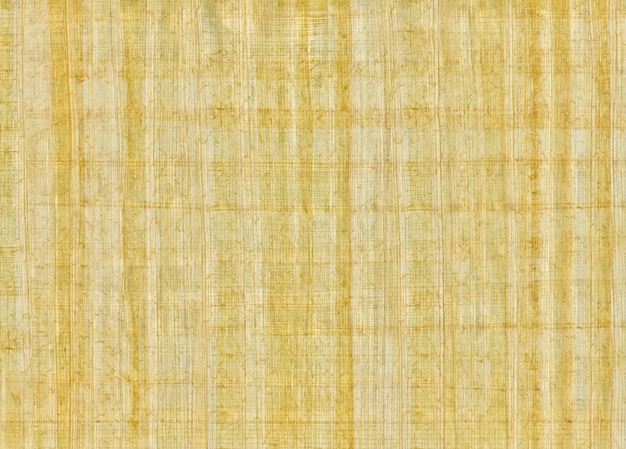 Traditionele egyptische handgemaakte blanco papyrus