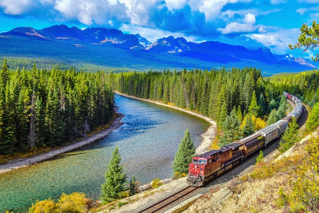 Trein die beroemde morant kromme in bow valley in de herfst overgaat
