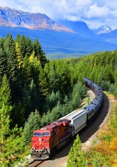 Trein die de beroemde kromming van morant, het nationale park van banff, canada overgaat