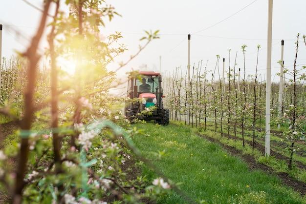 Trekkermachine die door boomgaardpad rijdt en appelbomen sproeit
