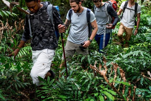 Trekking in een bos