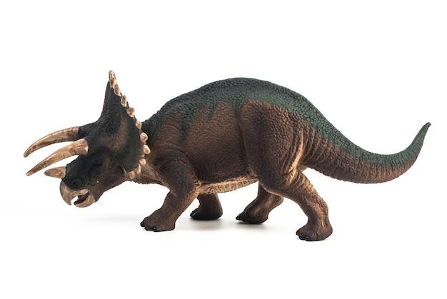 Triceratops dinosaurus op witte achtergrond