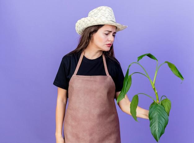 Triest mooi tuinman meisje in uniform dragen tuinieren hoed bedrijf en kijken naar plant geïsoleerd op blauw