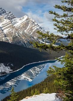Trillend blauw peyto-meer met weerspiegeling van canadese rocky mountain in alberta, canada.