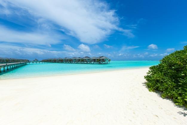 Tropisch eiland in de maldiven met wit zandstrand en zee