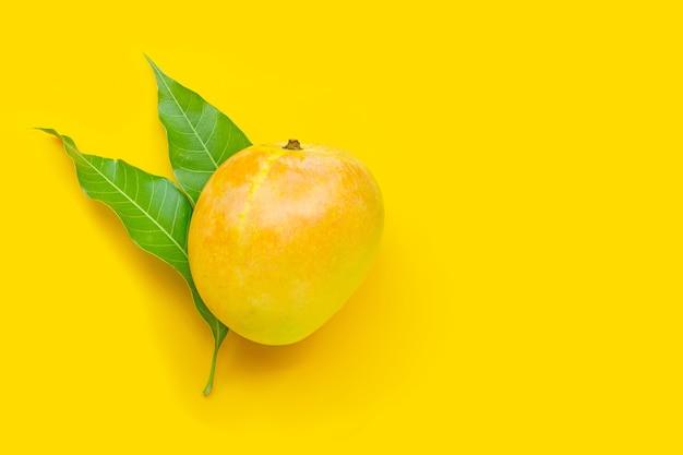 Tropisch fruit, mango op geel. bovenaanzicht