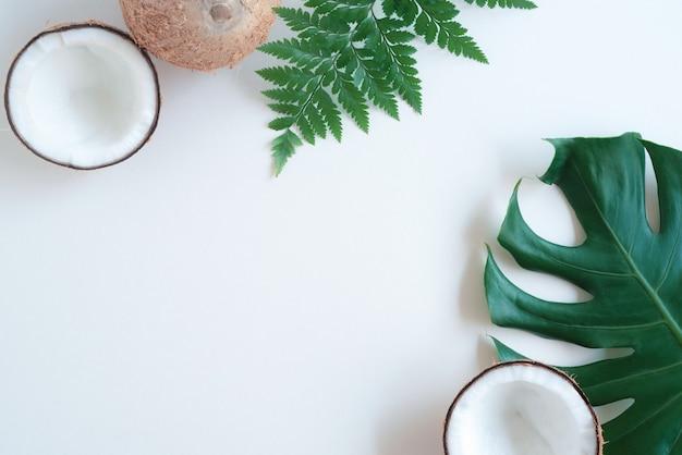 Tropisch groen palmblad en gebarsten kokosnoot op witte achtergrond natuur concept plat lag bovenaanzicht