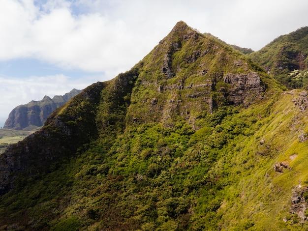 Tropisch hawaï-landschap met uitzicht op de bergen