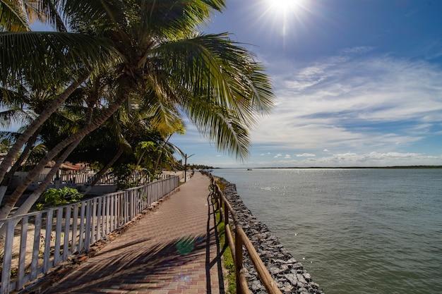 Tropisch landschap in kuststad (mangue seco - bahia - brazilië) met loopbrug, kokospalmen, rivier en zonlicht