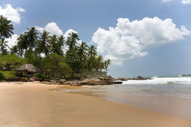 Tropisch paradijs met bomen en huis op strand met blauwe lucht en wolken