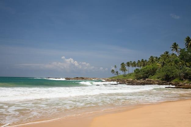 Tropisch paradijs met bomen op strand met blauwe hemel met wolken