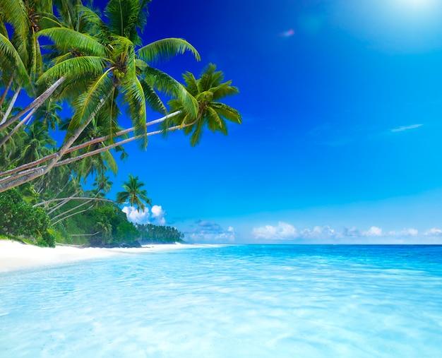 Tropisch paradijs.
