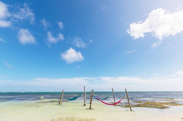 Tropisch paradijsstrand met palmbomen en traditionele gevlochten hangmat