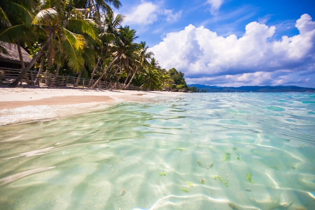 Tropisch perfect strand met groene palmen, wit zand en turquoise water