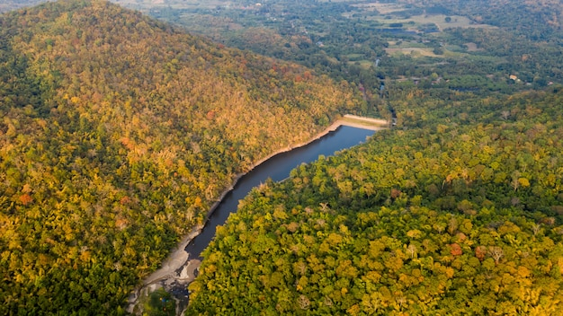 Tropisch regenwoud in herfstkleuren en natuurlijke luchtfoto van het damseizoen