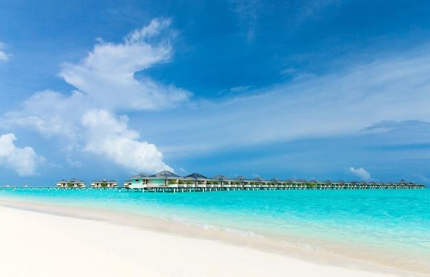 Tropisch strand in de maldiven met enkele palmbomen en blauwe lagune Premium Foto