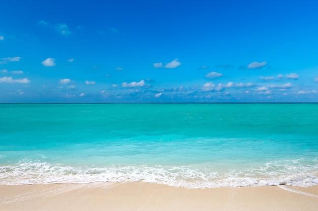 Tropisch strand in sri lanka. zomervakantie en vakantieconcept voor toerisme.