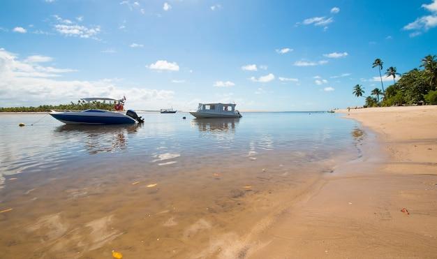 Tropisch strand met kokospalmen en boten op het eiland boipeba in bahia brazilië.