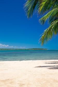 Tropisch strand met palmbomen en blauwe lagune
