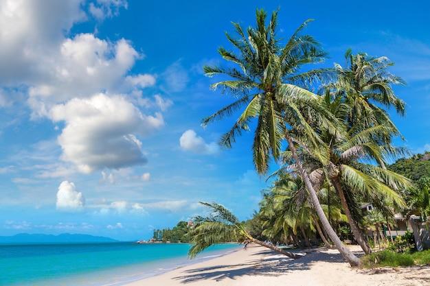 Tropisch strand met palmbomen op het eiland koh samui