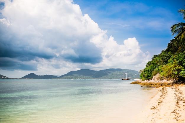 Tropisch strand met palmboom en zeilschip op afstand