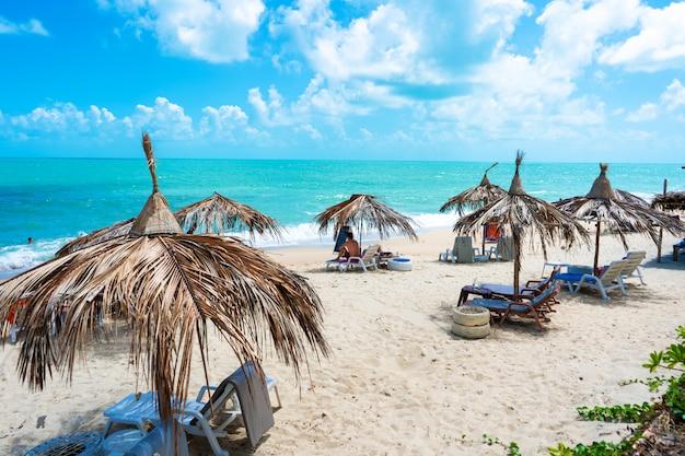 Tropisch strand met palmtakken en comfortabele ligstoelen.