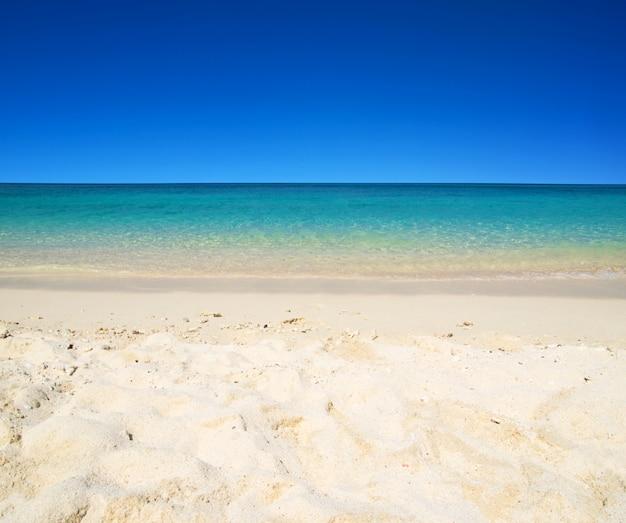 Tropisch strand met uitzicht op zee