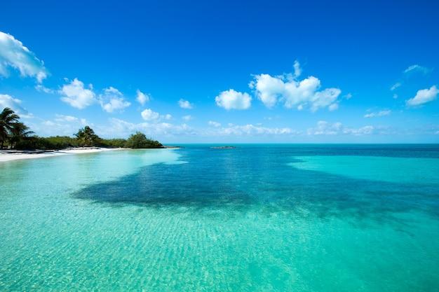 Tropisch strand op de malediven