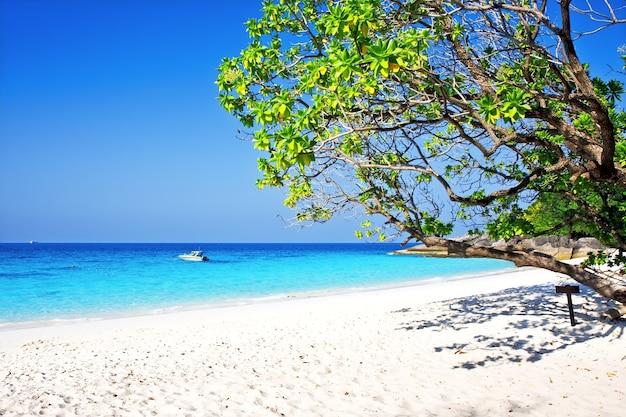Tropisch wit zandstrand arainst blauwe hemel. similan-eilanden, thailand, phuket