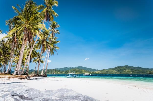 Tropisch zandstrand met kokospalm in el nido, palawan, filippijnen.