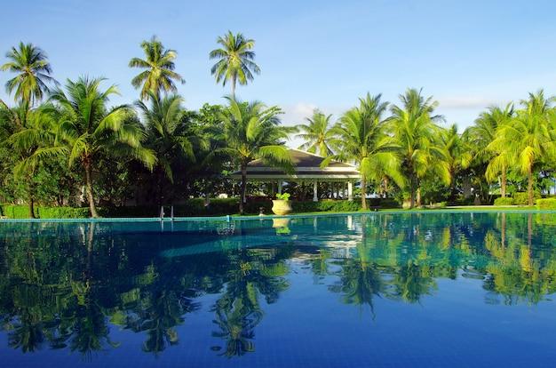 Tropisch zwembad met kokospalm en witte paraplu