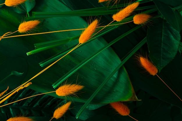 Tropische achtergrond met verschillende soorten tropische bladeren versierd met oranje lagurus gras. natuurlijke achtergrond