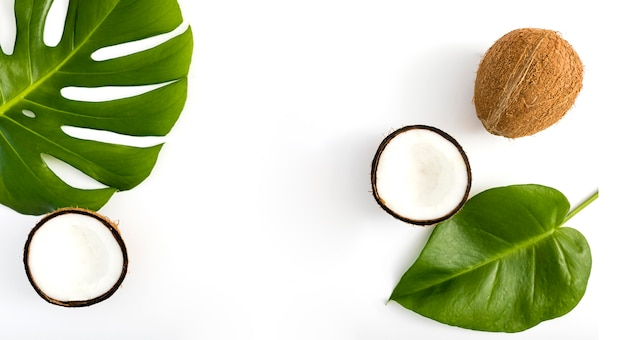 Tropische bladeren en kokos bovenaanzicht
