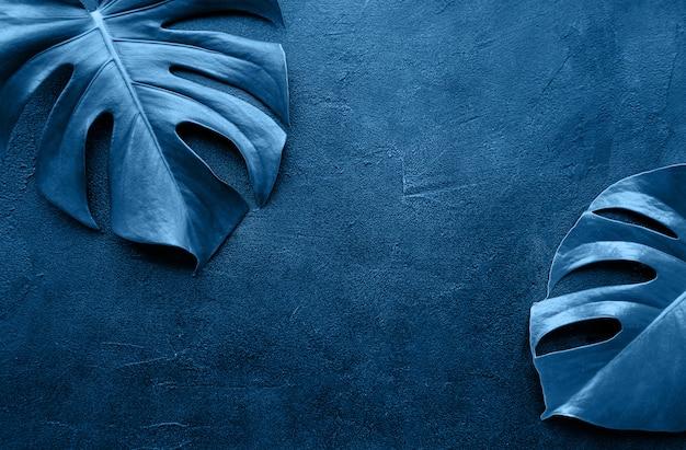 Tropische bladeren monstera toned klassieke blauwe kleur