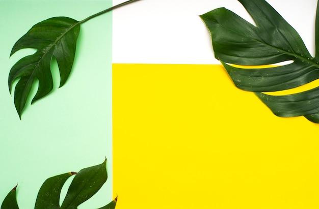 Tropische bladeren op gree en geel