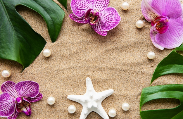 Tropische bladerenmonstera en orchideebloemen