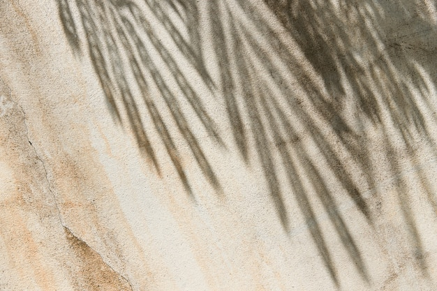Tropische bladerenschaduw op beige muurachtergrond