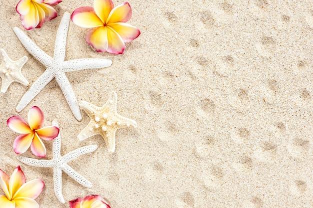 Tropische bloemfrangipani of plumeria en schelpen, zeester op zandachtergrond, bovenaanzicht, kopieerruimte