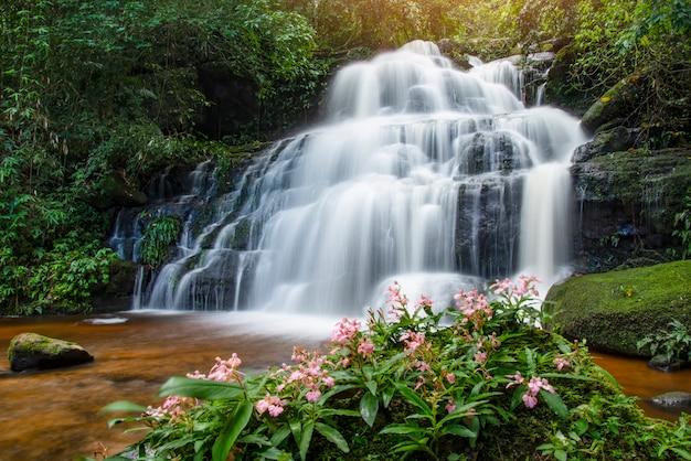 Tropische bos van de de stroomwaterval van de wildernisrivier van de het landschapsaard de aardinstallatie en roze bloem