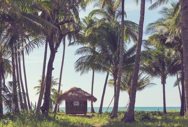 Tropische bugalow op het eiland palawan, filipijnen