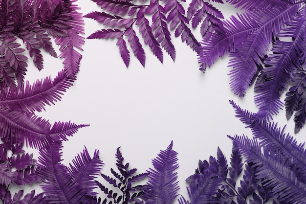 Tropische frame gemaakt van palm- of varenbladeren met kopie ruimte achtergrond. plat leggen.
