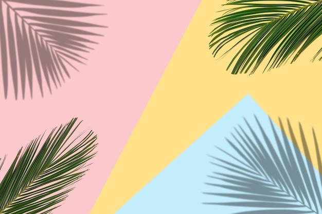 Tropische heldere kleurrijke achtergrond met exotische tropische palmbladeren
