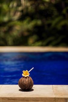 Tropische kokosnotendrank met gele bloem, bij zwembadrand