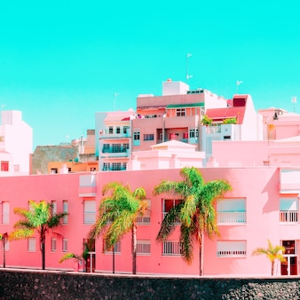 Tropische locatie. canarische eilanden. stedelijk minimaal