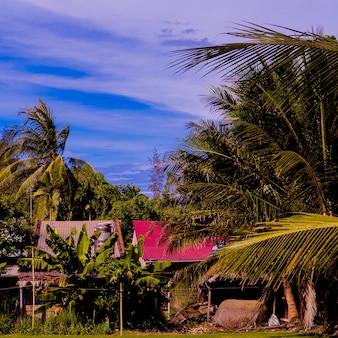 Tropische natuur. vietnam. strandvakantiestemming