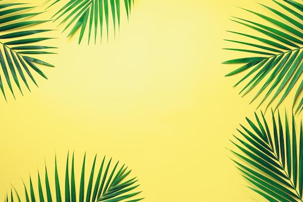Tropische palmbladen op pastel gele achtergrond. minimaal zomerconcept. bovenaanzicht groen blad op pittig pastel papier